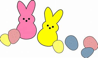Clipart Bunny Easter Peep Transparent Candies Candy