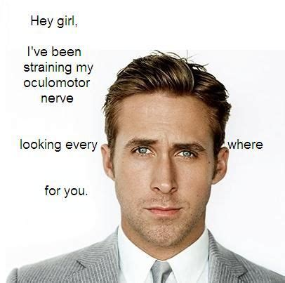 Neuroscience Meme - 41 best images about i hate nursing school on pinterest endocrine system ryan gosling and