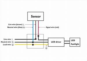 Ledmo Led Flood Lights Wiring Diagram