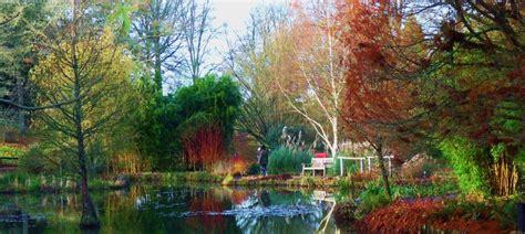 winter gardens    visit great british gardens