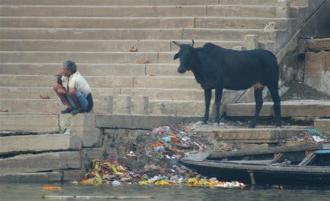 indien der schmutz und seine faszination