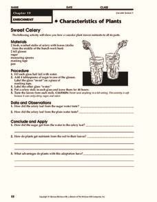 characteristics of plants worksheet celery lesson plans worksheets reviewed by teachers