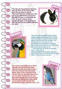 English teaching worksheets: Domestic animals