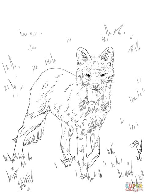 Coloring For Adults Drawing Kit Fox Coloring Pages Fox