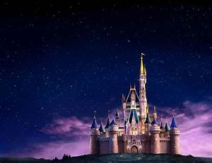 Walt Disney World Castle at night | Florida Escapes ...