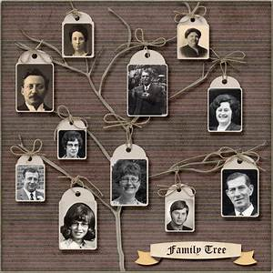17 Best Images About Family Tree Ideas On Pinterest