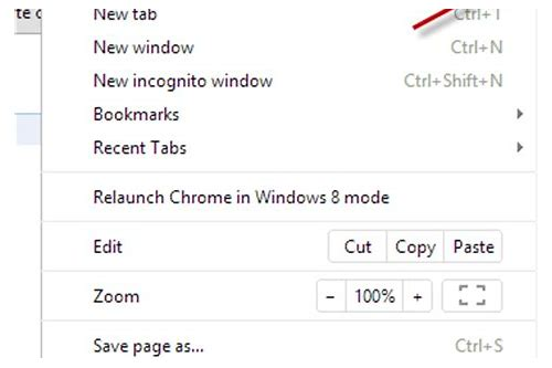 view downloads google chrome