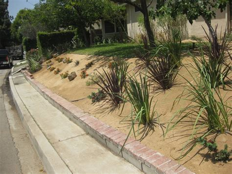 decomposed granite installation and planting yelp