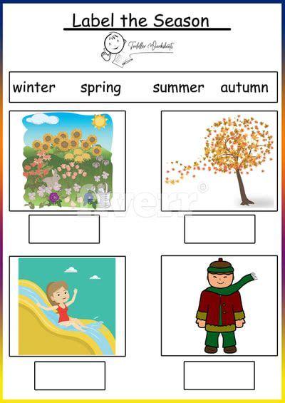 weather  season worksheet  seasons worksheets