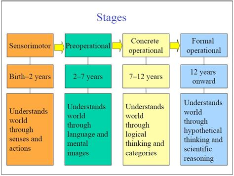 piagets cognitive development stages independent work