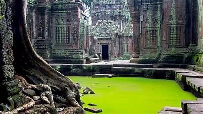 Angkor Wat Cambodia Temple Ta Prohm Temples