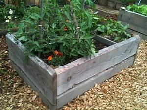 Carre De Jardin Potager : carr potager en plot douglas carr potager ~ Premium-room.com Idées de Décoration
