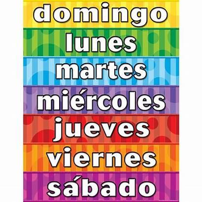 Spanish Week Days Chart Created Teacher