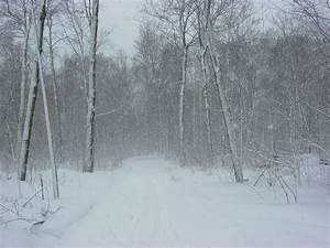 Difference Between Snowstorm And Blizzard
