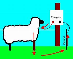 How Does An Electric Fence Work