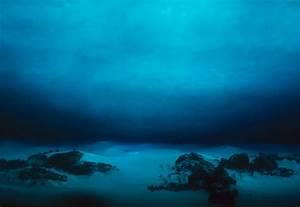 10 Essential Recordings From The Ocean Floor