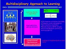 Statistical Learning Theory and Applications Brain and