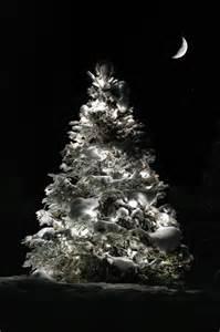Christmas Tree and Moon