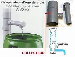 Bac Récupérateur D Eau De Pluie : l 39 t approche pensez au r cup rateur d 39 eau de pluie ~ Premium-room.com Idées de Décoration