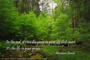 Forest Backgrou... Forest Floor Quotes