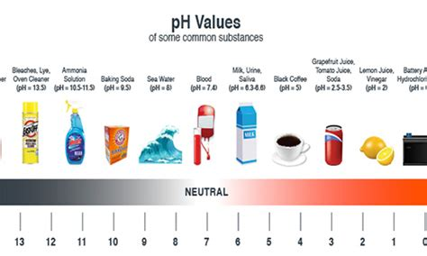 The Janitor's Closet - Basic Understanding of pH