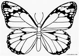 Butterfly Coloring Pages Printable Cartoon Butterflies Cool2bkids Colouring Drawing Monarch Colorings Getcolorings Getdrawings Sketches Simple Seniors sketch template