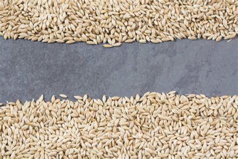 striped rows  dry groats couscous bulgur grain cereal