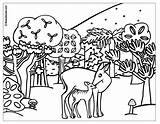 Coloring Forest Children Pages Print Popular sketch template