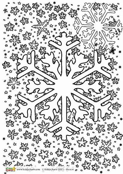 Winter Colouring Pages Adults Grown Ups Colour