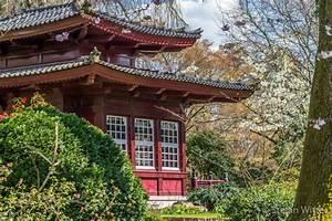 Pflanzen Japanischer Garten : japanischer garten archive stefan witte ~ Sanjose-hotels-ca.com Haus und Dekorationen