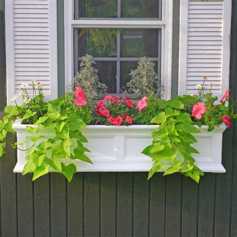 window garden box mayne fairfield 11 in x 36 in plastic window box 5822w