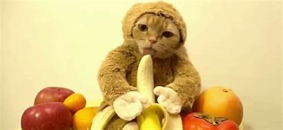 Eating Bananas China Fruit Bans Sugar Streaming