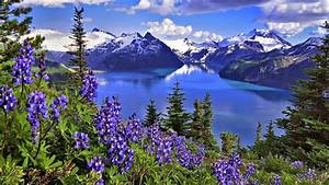 Latest Nature Wallpapers 2015 HD