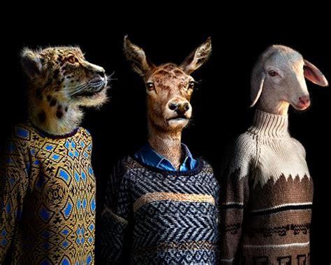 miguel vallinas adorns animals  apparel  reflect