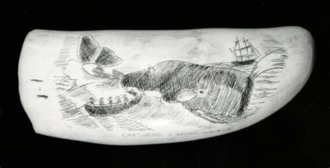 list  synonyms  antonyms   word scrimshaw art