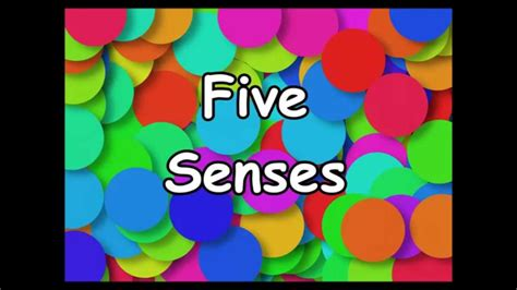 the five senses song silly school songs 725 | maxresdefault