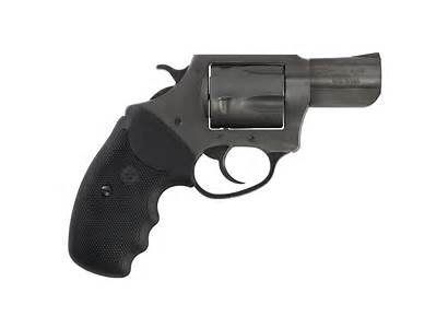 9mm Revolver Charter Action Arms Grips Pitbull