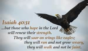 Image result for like wings on eagles photo