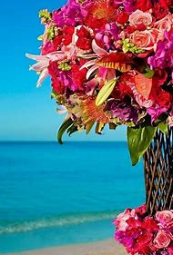 Tropical Beaches with Flowers