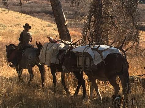hunting wyoming horseback elk 2447 teton