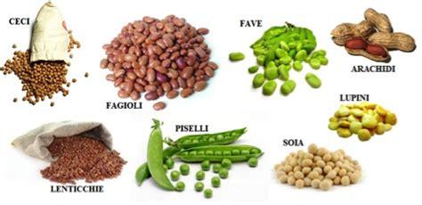Alimenti Contenenti Fosforo I Legumi Preziosi Vegetali Ricchi Di Proteine