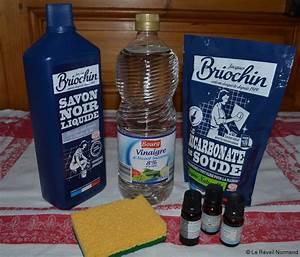 Insecticide Savon Noir Bicarbonate : des produits simples efficaces et pas chers ~ Dailycaller-alerts.com Idées de Décoration