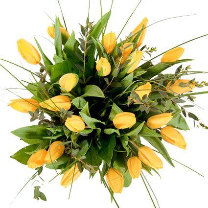 Ziedu piegāde | Dzeltenu tulpju pušķis: Modini jūtas