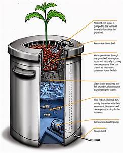 5 Amazingly Simple Aquaponics Systems