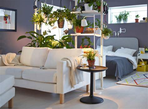 plante pour chambre à coucher les plantes comme séparateurs