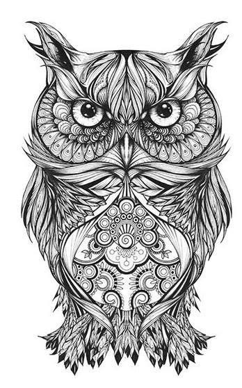 Moki Owl Temporary Tattoos   tattoo   Tribal owl tattoos, Owl, Owl art