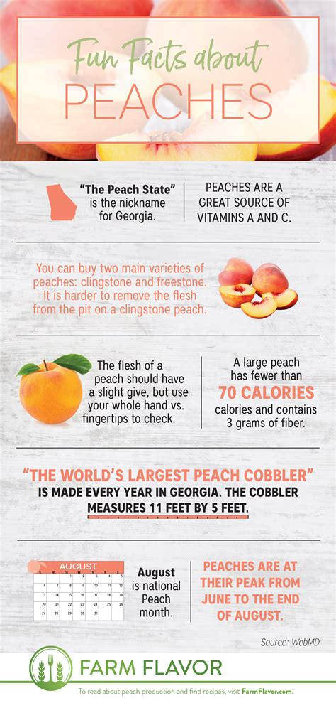 8 Fun Facts About Peaches For National Peach Month