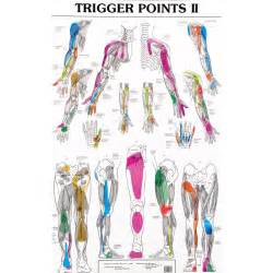 Trigger Point Therapy Chart