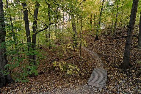 trails toronto hiking woods crothers place around hikes most incredible blogto