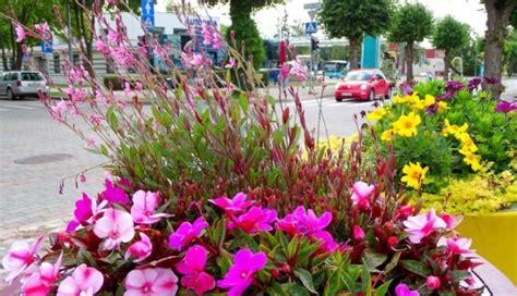 Foto: Krāšņas ziedu kompozīcijas rotā Ventspili - DELFI